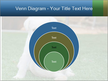 White Puppy PowerPoint Templates - Slide 34