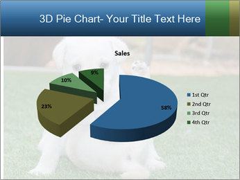 White Puppy PowerPoint Templates - Slide 35