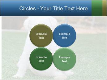 White Puppy PowerPoint Templates - Slide 38