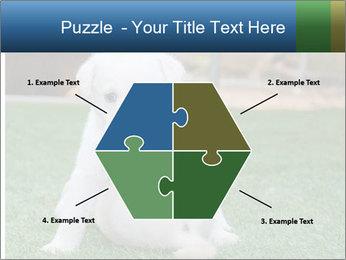 White Puppy PowerPoint Templates - Slide 40
