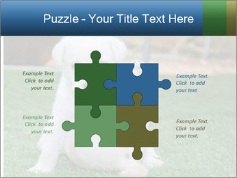White Puppy PowerPoint Templates - Slide 43
