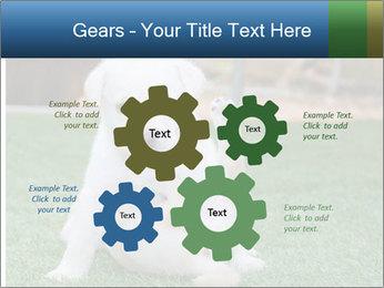 White Puppy PowerPoint Templates - Slide 47