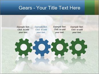 White Puppy PowerPoint Templates - Slide 48