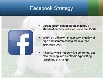 White Puppy PowerPoint Templates - Slide 6