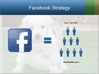 White Puppy PowerPoint Template - Slide 7