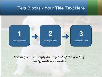 White Puppy PowerPoint Templates - Slide 71