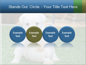 White Puppy PowerPoint Template - Slide 76