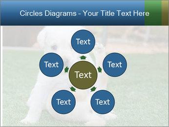 White Puppy PowerPoint Templates - Slide 78