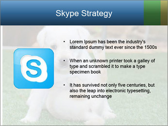 White Puppy PowerPoint Template - Slide 8