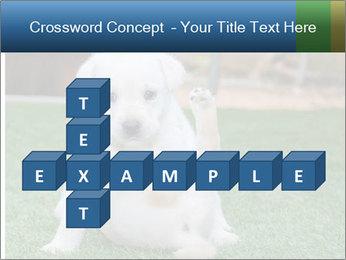 White Puppy PowerPoint Templates - Slide 82