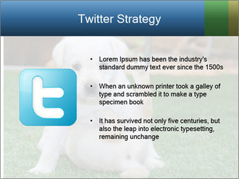 White Puppy PowerPoint Template - Slide 9