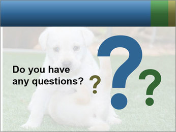White Puppy PowerPoint Template