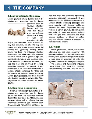 0000089155 Word Template - Page 3