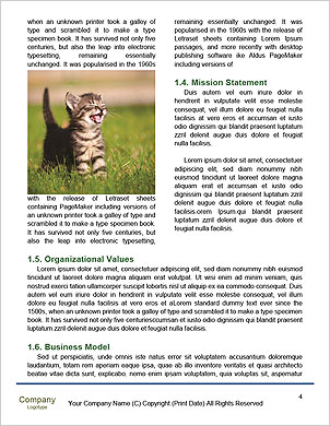 0000089155 Word Template - Page 4