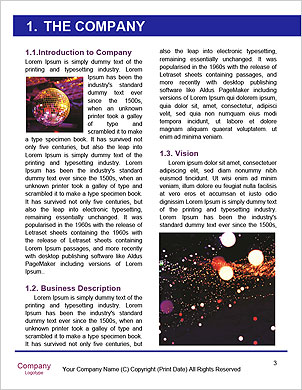 0000089156 Word Template - Page 3