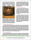 0000089159 Word Template - Page 4