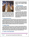 0000089160 Word Templates - Page 4