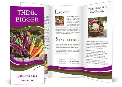 0000089161 Brochure Template