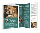 0000089162 Brochure Templates