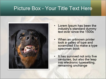 Aggressive Dog PowerPoint Template - Slide 13