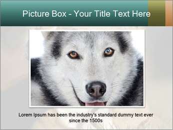 Aggressive Dog PowerPoint Template - Slide 16