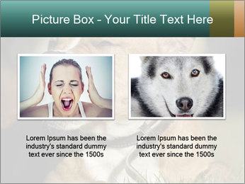 Aggressive Dog PowerPoint Templates - Slide 18