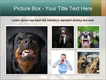 Aggressive Dog PowerPoint Templates - Slide 19