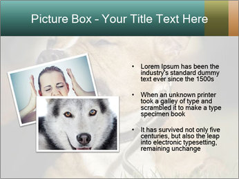Aggressive Dog PowerPoint Template - Slide 20