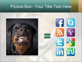 Aggressive Dog PowerPoint Template - Slide 21