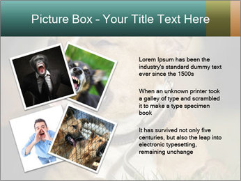 Aggressive Dog PowerPoint Templates - Slide 23