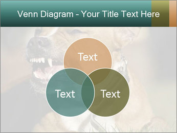 Aggressive Dog PowerPoint Templates - Slide 33