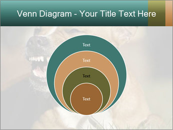 Aggressive Dog PowerPoint Templates - Slide 34