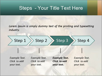 Aggressive Dog PowerPoint Template - Slide 4