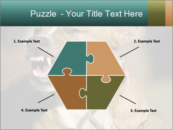 Aggressive Dog PowerPoint Template - Slide 40