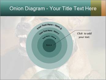 Aggressive Dog PowerPoint Template - Slide 61