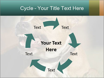 Aggressive Dog PowerPoint Template - Slide 62