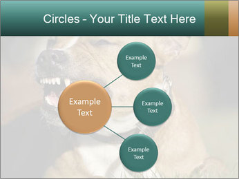 Aggressive Dog PowerPoint Template - Slide 79