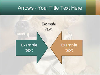 Aggressive Dog PowerPoint Template - Slide 90
