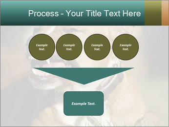 Aggressive Dog PowerPoint Template - Slide 93