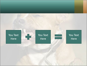 Aggressive Dog PowerPoint Template - Slide 95