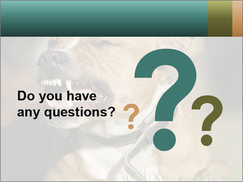 Aggressive Dog PowerPoint Template - Slide 96