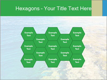 Idyll Seascape PowerPoint Template - Slide 44