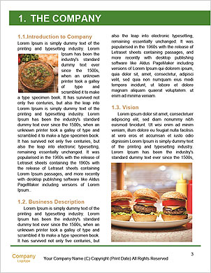 0000089165 Word Template - Page 3