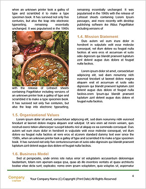 0000089165 Word Template - Page 4