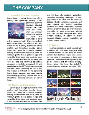 0000089166 Word Template - Page 3