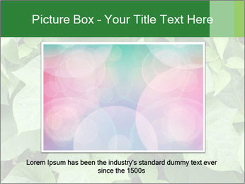 Green Foliage In Garden PowerPoint Template - Slide 15