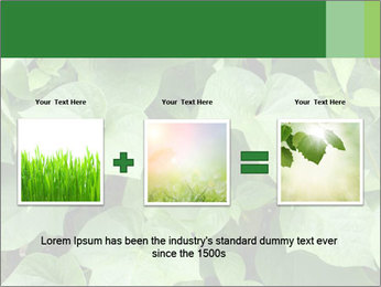 Green Foliage In Garden PowerPoint Template - Slide 22