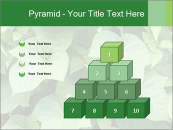 Green Foliage In Garden PowerPoint Template - Slide 31
