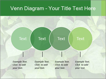 Green Foliage In Garden PowerPoint Template - Slide 32