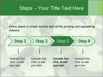 Green Foliage In Garden PowerPoint Template - Slide 4